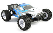 FTX Carnage 1:10 4wd Truggy - RTR