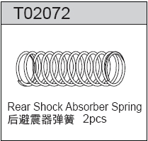 TeamC Rear Spring (2)
